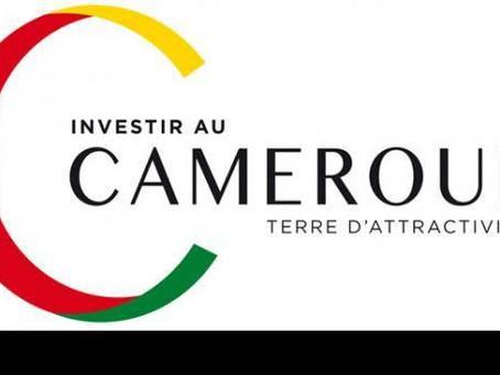 Cameroun pays des opportunités - Le potentiel économique du Cameroun