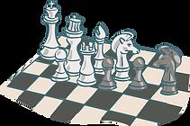 conseil et stratégie.png