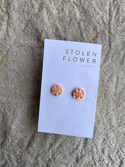 Poppy Stud - Coral