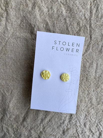 Poppy Stud - Daffodil