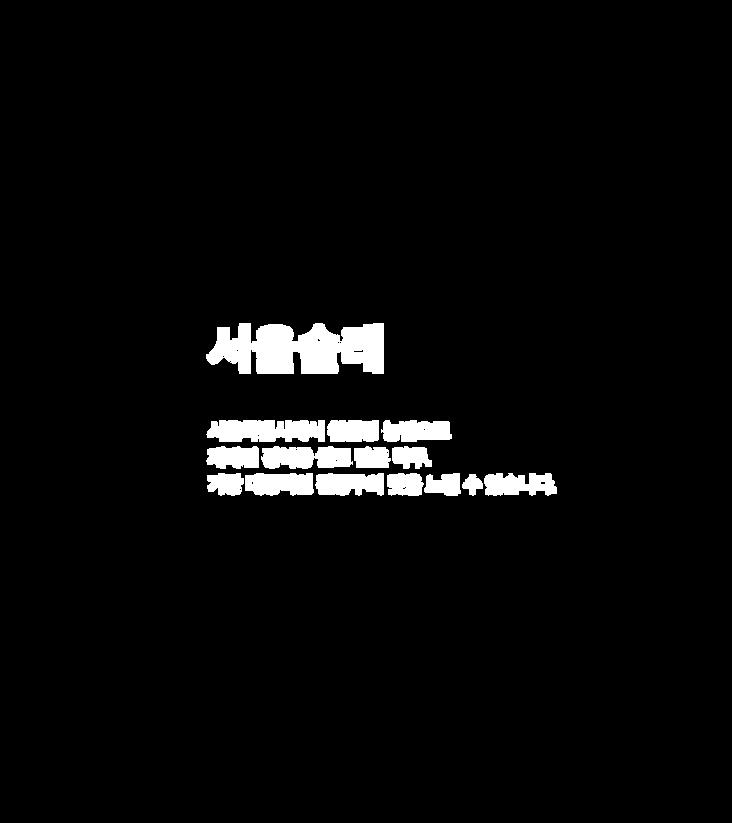 wix_서울술래소개글.png