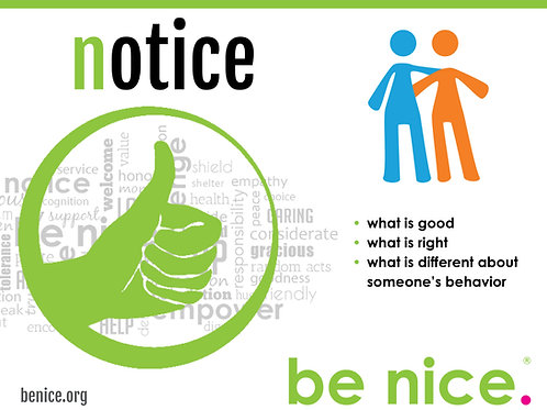 be nice. Action Plan Posters