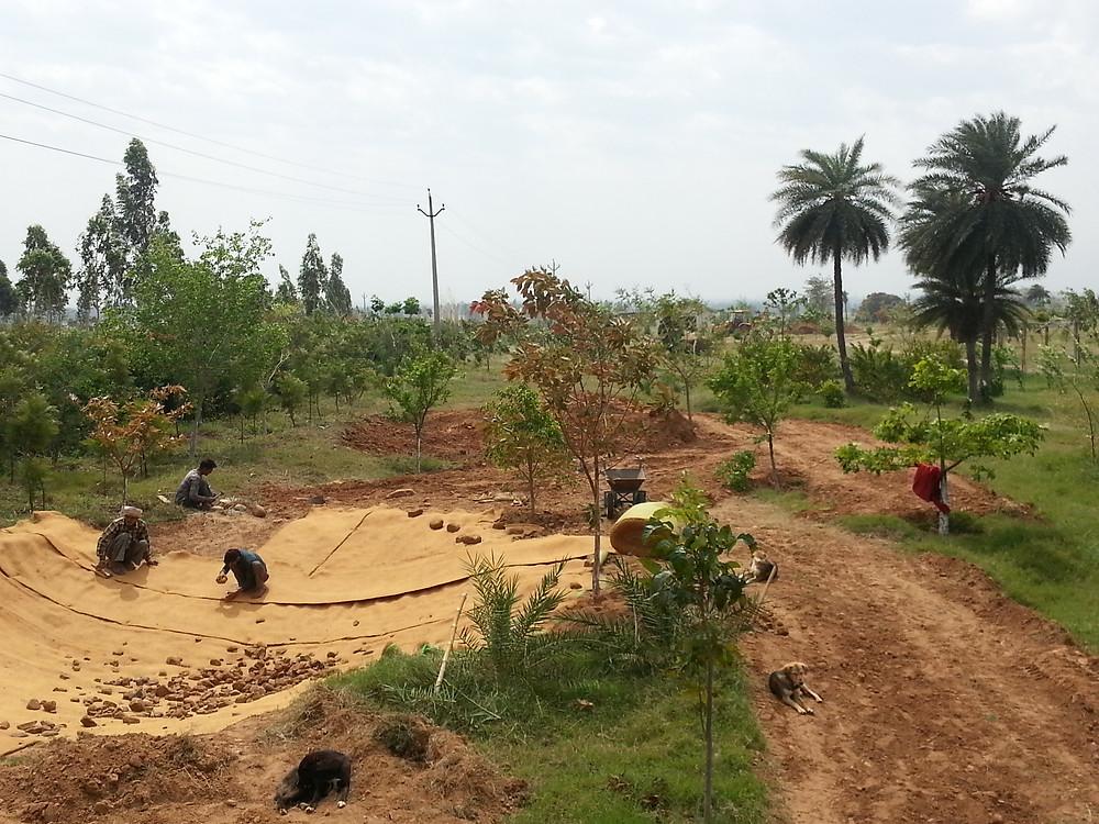 digging pools