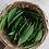 Thumbnail: Dried Bay Leaf
