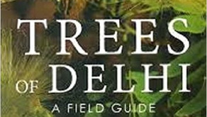 Tree Selection: for Forest & Orchard