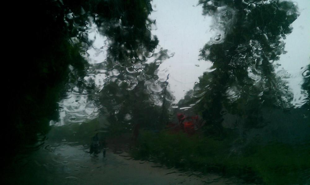 downpour in saharanpur nursery
