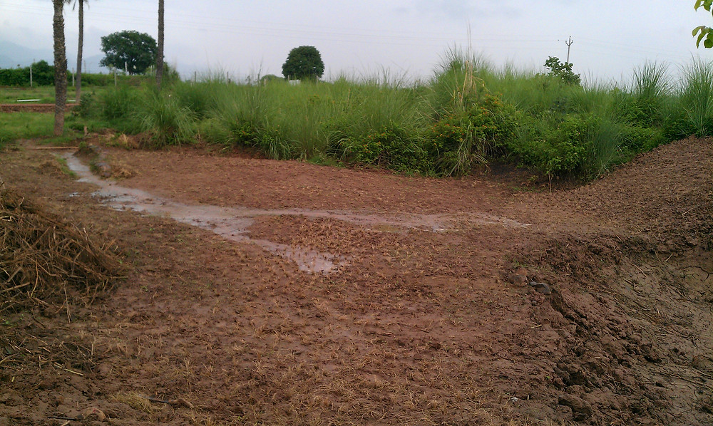 water management permaculture