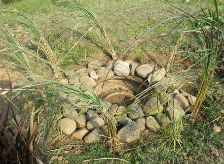 Making a Tyre Pond