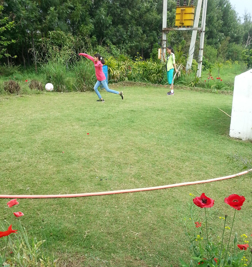 lawn for playing