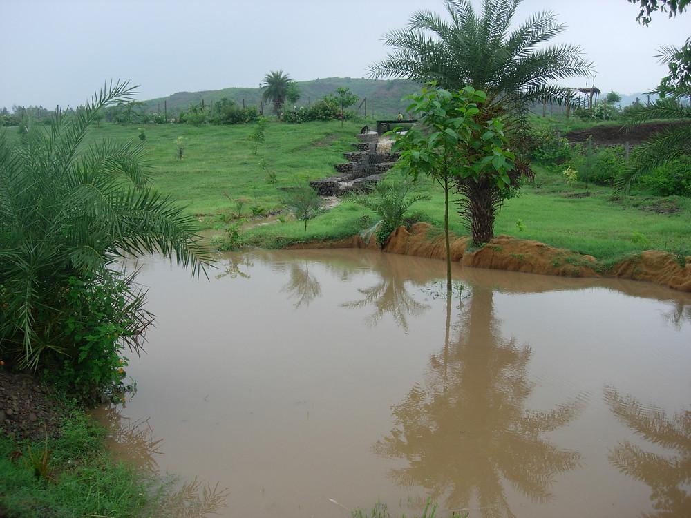 rentention pond