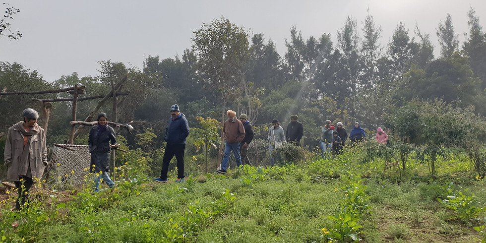 Introduction to Permaculture Tour and Class
