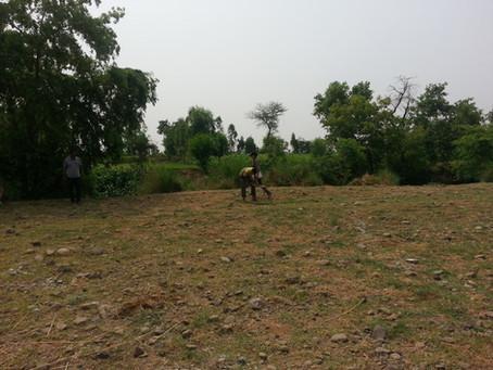 Adding 2 Acres of Land: Mandala