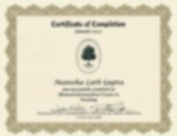 PTT certificate.png