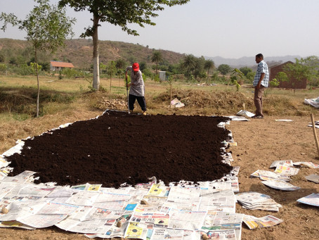 Soil Management in Permaculture: Wood Chip Farming