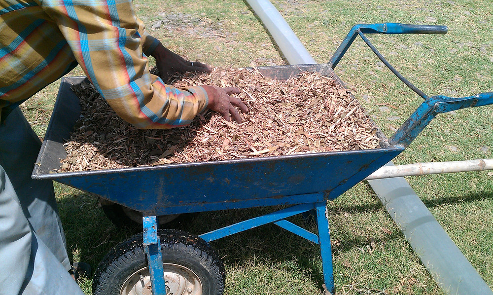 wood chips mulching