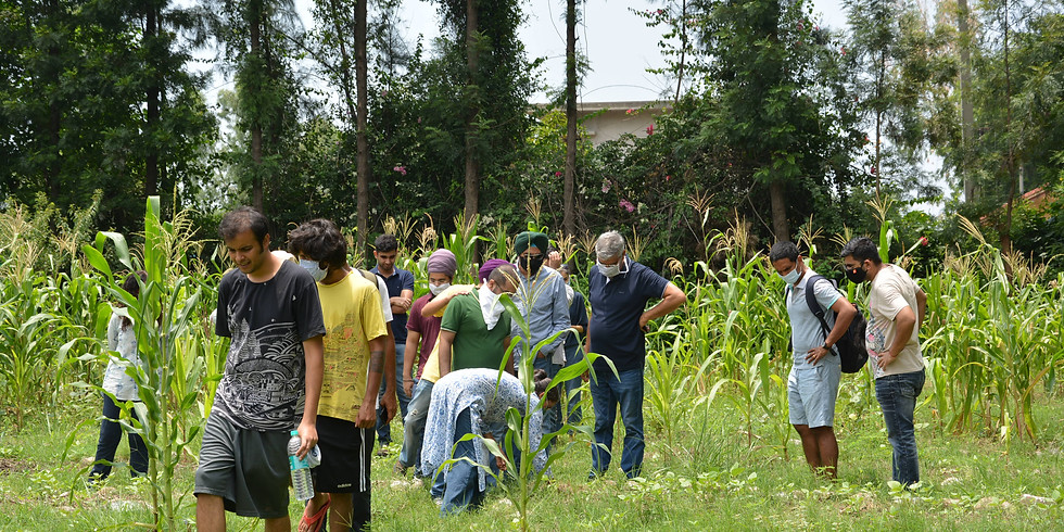 Introduction to Permaculture Class