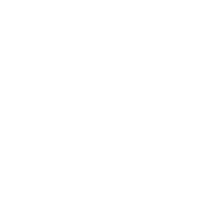 Triangles White Angle 40pc.png