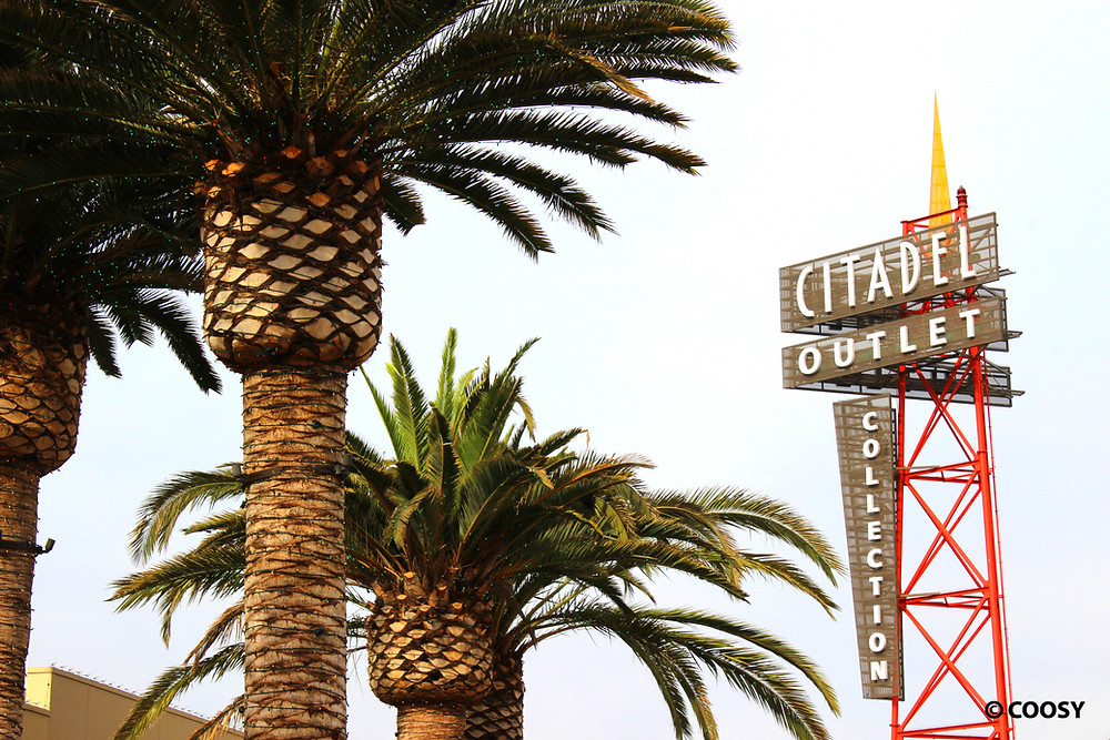 Image of Citadel Outlet sign near palm trees.