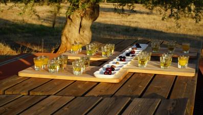 eumelia-olive-oil-tasting