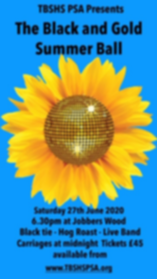Ball Poster 2020_edited_edited.png
