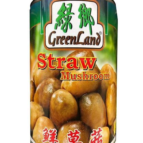 Green Land Mushroom - Straw 425g
