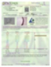 Anshin Peppermint Mints-page-001.jpg