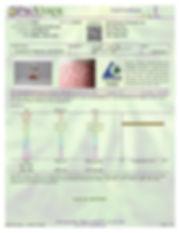 Anshin Cinnamon Mints-page-001.jpg