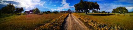 Panoramica 01.jpg