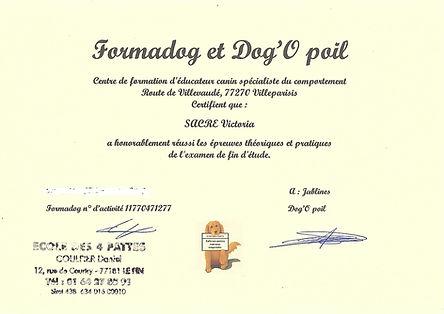 Scan diplome-page-001.jpg