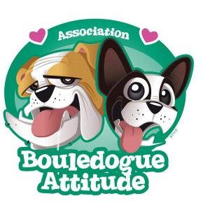 bouledogue attitude.jpg