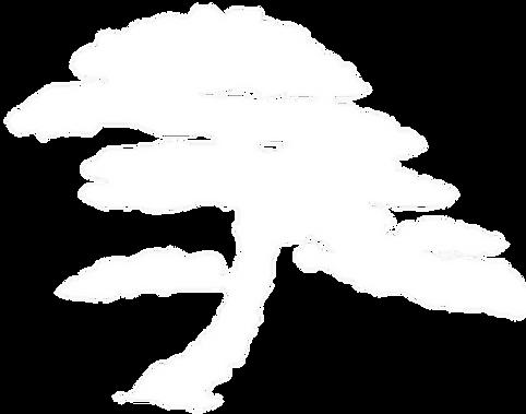 arbre_zen.png
