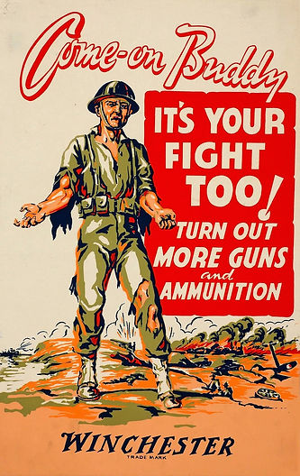 Come-on buddy, it's your fight too! (USA