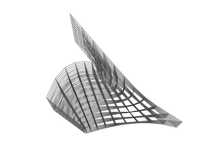 20200129_bacon_head warped grid 3d [Conv