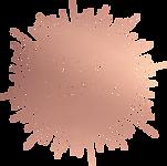 ns_circle_logo_RG.png