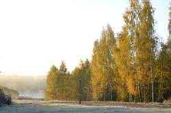 Территория и пейзажи