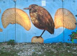 Граффити фестиваль09