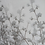 Thumbnail: Windflower