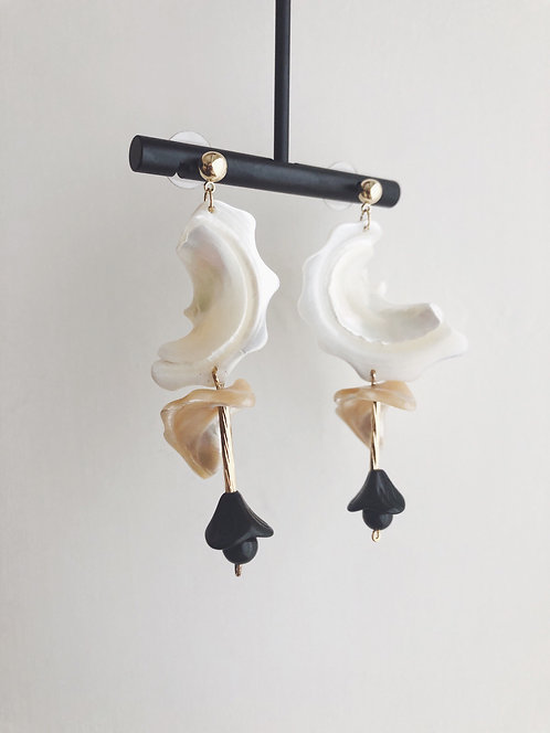 Two Shades Natural Shell Earrings