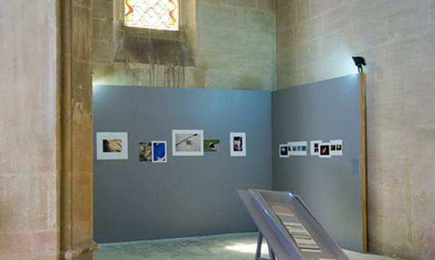SCENOGRAPHIE DE L'EXPOSITION WORK IN PROGRESS 2015