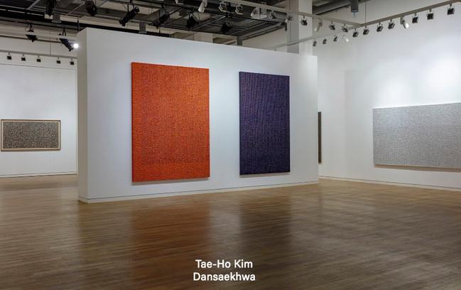 김태호 Kim Tae Ho