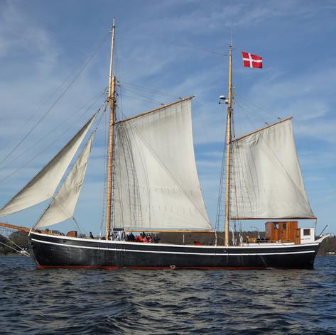 Sejlskibet FREM