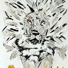 Bermano White Lion 40 x 30 Inches Acrylic on canvas