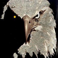 Bermano Eagle 40 x 30 Inches Acrylic on canvas