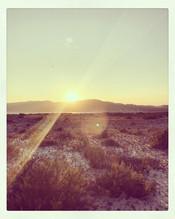 Day mood - endless summer ✨🌅✨ #sunset #