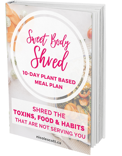 Shred Recipe Mock Up BOOK .png