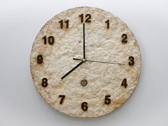 """Mycelium """"Doomsday"""" clock"""