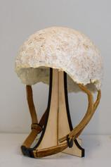 Sustainable Mycelium helmet