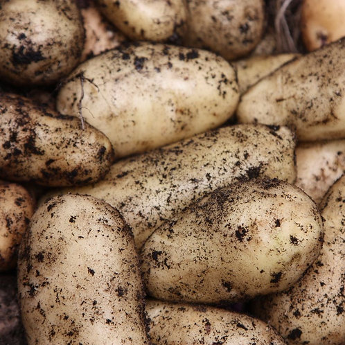Seed Potatoes Sharpe's express