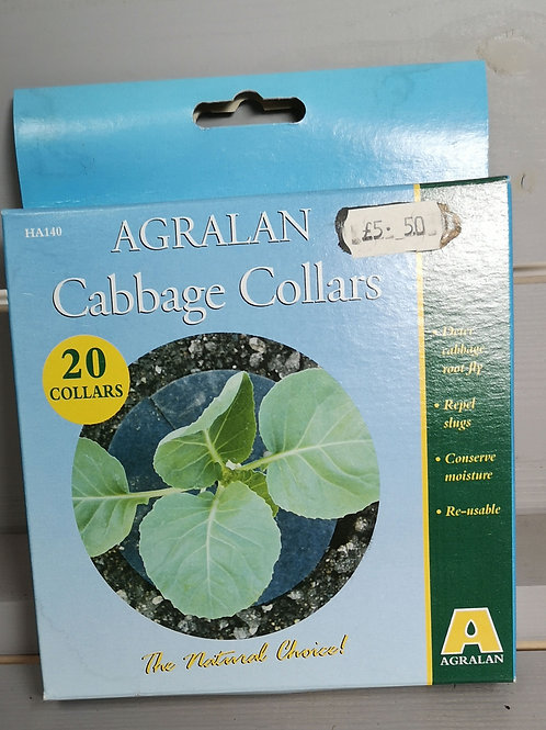 Cabbage collars 20 pack