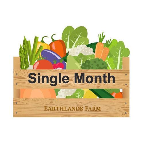 Single Month (4 weeks)